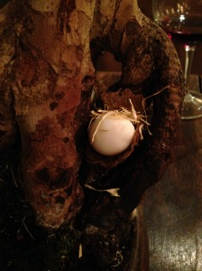 Quails nest